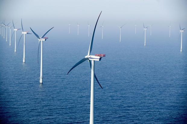 The Navitus Bay wind farm scheme was rejected by the government