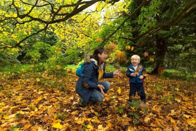 RSPB Arne Nature Tots pre-school group