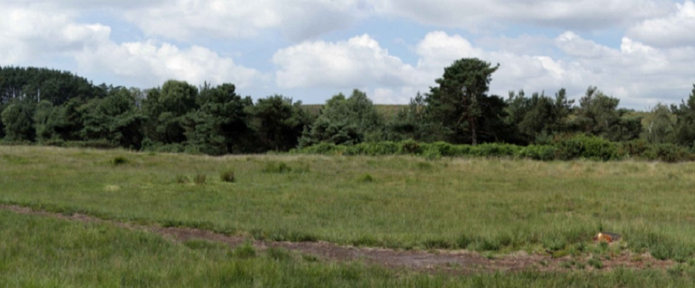 Views showing the proposed site of extractino from Imerys in Wareham.